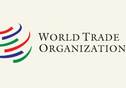 Brasil não abre mão de status de país em desenvolvimento, diz diretor da OMC