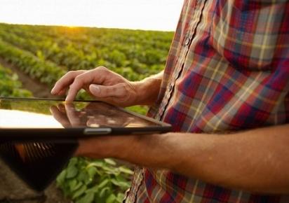 Internet das coisas avança no campo