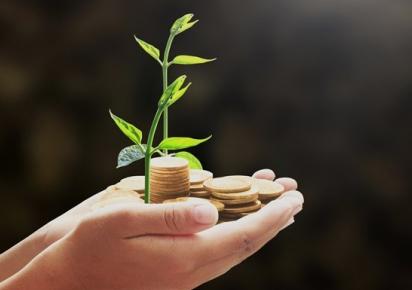 Valor Bruto da Produção Agropecuária em 2019 deve superar o deste ano