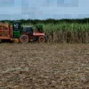 A solução pela cana qual é o potencial de produção da bioenergia no Brasil