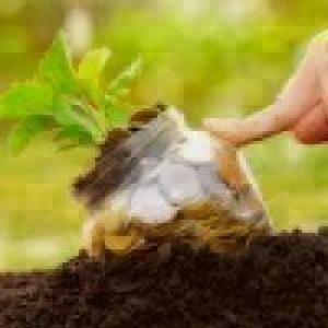 Valor da Produção Agropecuária é de R$ 588,8 bilhões